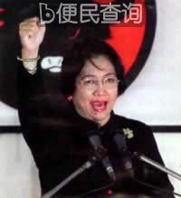 印尼副总统梅加瓦蒂诞辰