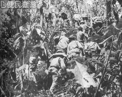 中国协助美军击毙山本五十六